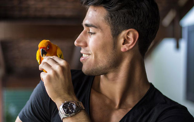 best gifts for bird lovers